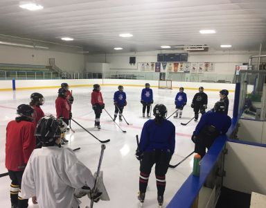 Hockey, Ontario Wellness Retreat Activity
