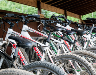 Mountain Biking, Wellness Retreat Activity